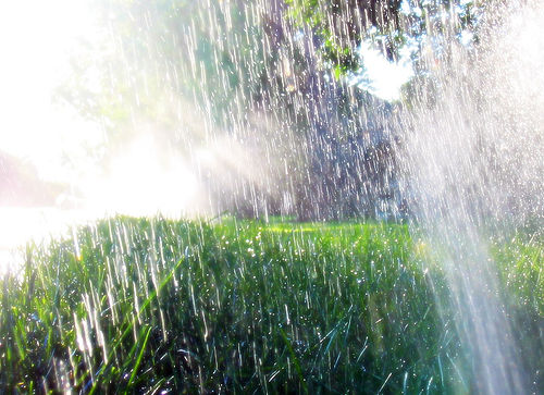 Irrigation Rotors in Pensacola
