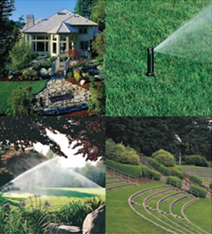 Irrigation Valves in Pensacola